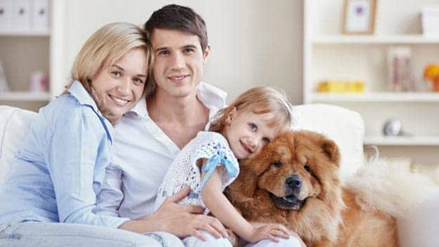 Wills & Trusts dog-young-family Direct Wills Plaistow